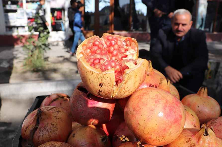 Pomegranate Festival in Azerbaijan